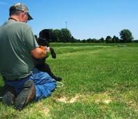 Iowa Retriever Trainer: Gun Dog Training Packages - Starkeeper Kennels